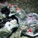 Двама в ареста в Пловдив за притежание на 4 кг марихуана