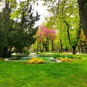 Започва третиране на тревните площи срещу кърлежи