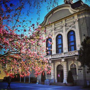 Община Пловдив предлага антикризисни мерки в подкрепа на независимия културен сектор