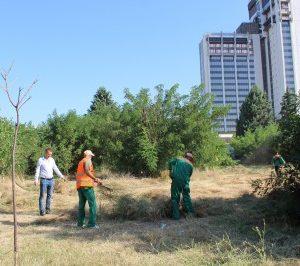 "ОП ""Градини и паркове"" коси и чисти парка зад хотел ""Санкт Петербург"" след съгласие на собственика"