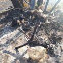 """Служители на """"Общинска охрана"""" заловиха нарушител, горил автомобилни гуми на брега на Марица"""